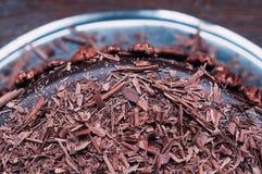Torta de chocolate deliciosa macra con las nueces y el esmalte lujoso imagen de archivo