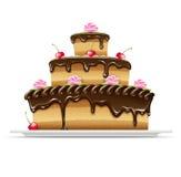 Torta de chocolate dulce para el cumpleaños Fotos de archivo libres de regalías