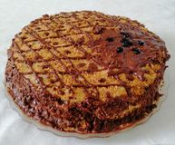 Torta de chocolate hecha a mano adornada con las bayas imagen de archivo libre de regalías