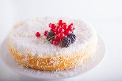Torta de coco hecha en casa Fotografía de archivo