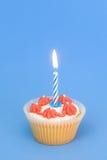 Torta de cumpleaños Fotografía de archivo libre de regalías