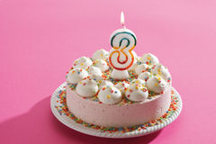Torta de cumpleaños con la vela ardiente Fotografía de archivo libre de regalías