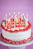 Torta de cumpleaños con las velas Imagen de archivo libre de regalías