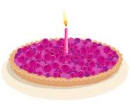 Torta de cumpleaños de la baya Fotografía de archivo libre de regalías