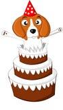 Torta de cumpleaños del beagle Fotos de archivo libres de regalías
