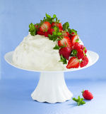Torta de esponja Angel Food Imagen de archivo