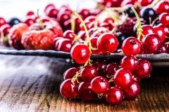 Torta de esponja de la pasa roja Placa con las bayas clasificadas del verano, frambuesas, fresas, cerezas, pasas, grosellas espin Foto de archivo