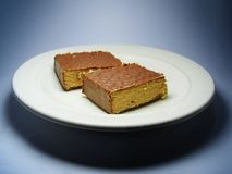 Torta de fango del chocolate en la placa. Fotos de archivo libres de regalías