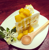 Torta de frutas de la fruta Fotos de archivo libres de regalías