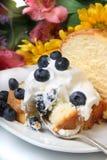 Torta de frutas del arándano fotos de archivo libres de regalías