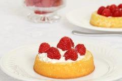 Torta de frutas macra de la frambuesa Fotografía de archivo