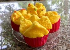 Torta de la algodón Foto de archivo libre de regalías