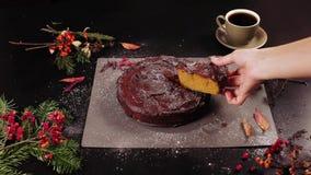 Torta de la calabaza del chocolate almacen de metraje de vídeo