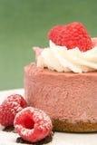 Torta de la crema batida de la frambuesa foto de archivo libre de regalías