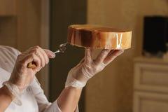 Torta de la crema batida del queso foto de archivo