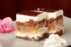 Torta de la crema del chocolate Fotografía de archivo libre de regalías