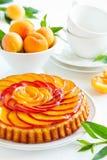 Torta de la fruta con los melocotones imagen de archivo libre de regalías