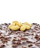 Torta de la galleta del chocolate Fotografía de archivo libre de regalías