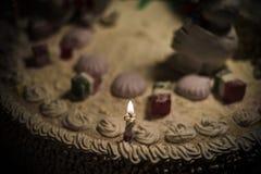 Torta de la gallina de la torta del gallo, torta del pollo, torta del pájaro Imagenes de archivo