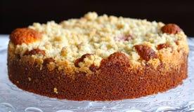 Torta de la migaja con ruibarbo Imagen de archivo libre de regalías