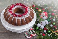 Torta de la Navidad con la fruta Adornado con los arándanos Imagen de archivo