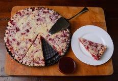Torta de la pasa roja Foto de archivo