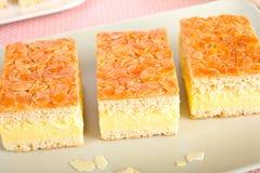 Torta de la picadura de abeja Fotografía de archivo libre de regalías