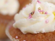 Torta de la taza Fotos de archivo libres de regalías