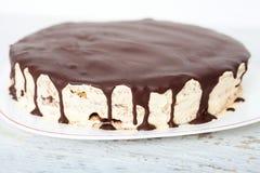 Torta de la vainilla, de la nuez y de chocolate Imagen de archivo libre de regalías