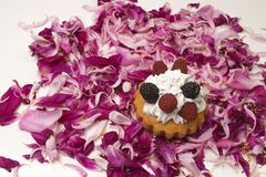 Torta de las bayas en la flor Fotos de archivo