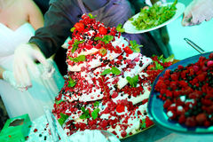 Torta de las frutas del bosque Imagen de archivo libre de regalías