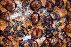 Torta de levadura con los ciruelos y los ar?ndanos imagen de archivo libre de regalías