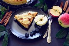 A torta de maçã americana da tradição com maçãs, mirtilo e canela decorou as folhas da maçã no fundo de madeira escuro Fotografia de Stock