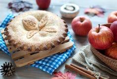 Torta de maçã da ação de graças Fotos de Stock Royalty Free