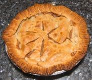Torta de maçã orgânica caseiro Imagem de Stock