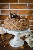 Torta de miel con las nueces y el chocolate rallado Fotos de archivo libres de regalías