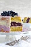 Torta de mirtilo com o floco do queijo creme e do coco Imagens de Stock Royalty Free