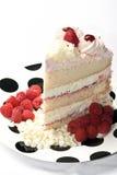 Torta de Rasberry Fotografía de archivo libre de regalías