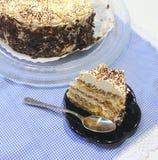 Torta de Tiramisu Imagen de archivo