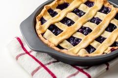 Torta de uva-do-monte Fotografia de Stock