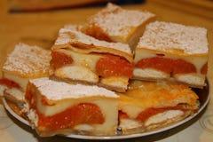 Torta del albaricoque Fotografía de archivo libre de regalías