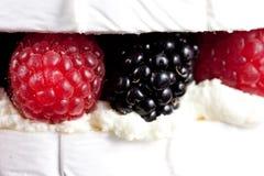Torta del brie del queso de la especialidad Imagen de archivo libre de regalías