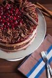 Torta del chocolate y de la cereza Imagen de archivo libre de regalías