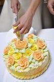 Torta del corte de la novia Imágenes de archivo libres de regalías