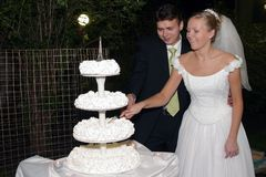 Torta del corte de los pares del recién casado Fotografía de archivo