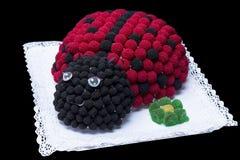 Torta del Ladybug Fotografie Stock Libere da Diritti