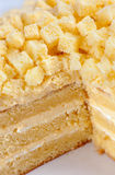Torta del Mimosa Fotografia Stock
