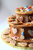 torta del pan de jengibre del cumpleaños Fotografía de archivo libre de regalías