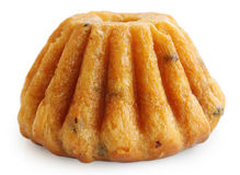 Torta del ron, aislada en blanco Foto de archivo