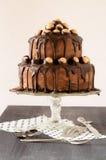 Torta del whisky con crema y chocolate del cacahuete Imágenes de archivo libres de regalías